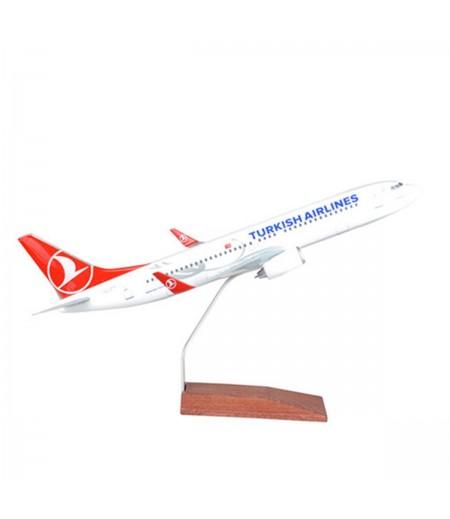 B737 800 1/100 Model Uçak